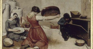 Musée d'Arts : L'histoire de la constitution de la collection d'Art ancien et moderne (3/4)