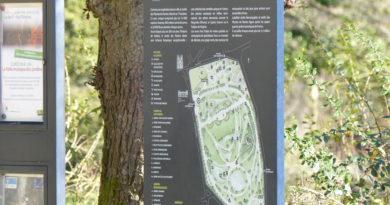 À la recherche des korrigans au Jardin des plantes